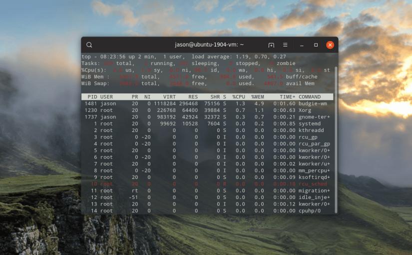 Terminal Task Manager – Top